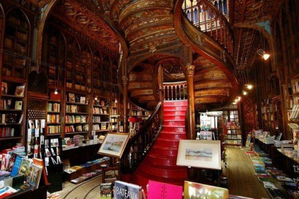 As bibliotecas e livrarias mais bonitas de Portugal