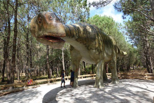 10 parques de aventura na natureza para levar a família toda