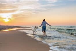 6 praias em Portugal onde pode levar o seu cão